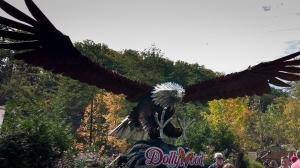 Massive eagle!